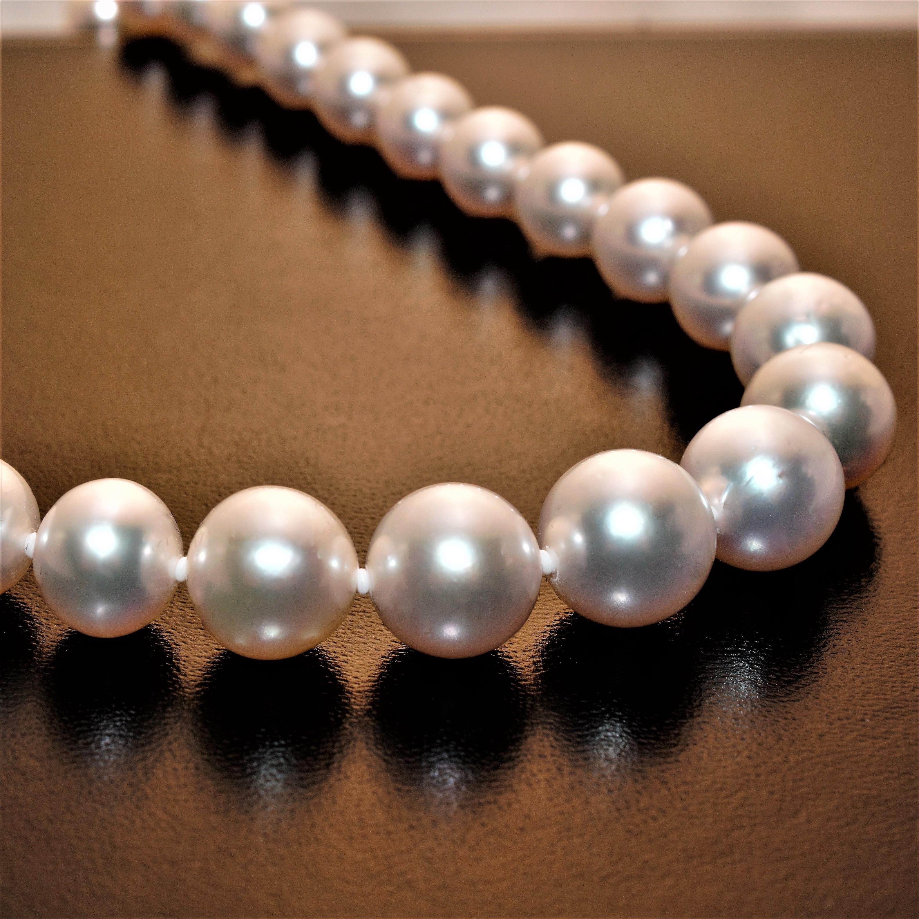 Colliers en perles Akoya