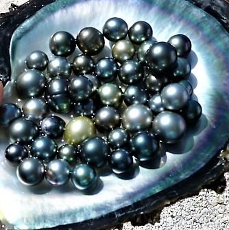 Perles de Tahiti à l'unité